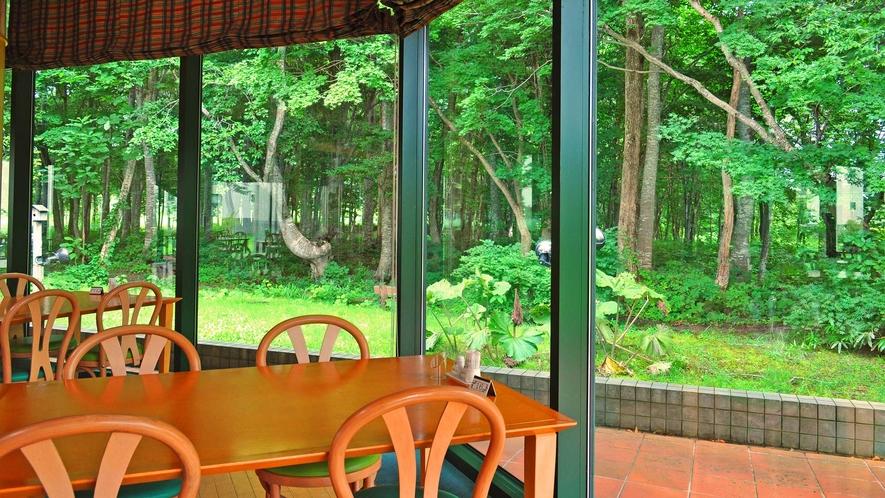 【レストラン】お食事と窓一面に広がる大自然をお楽しみください。