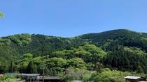 当館裏山のお諏訪様からの眺め