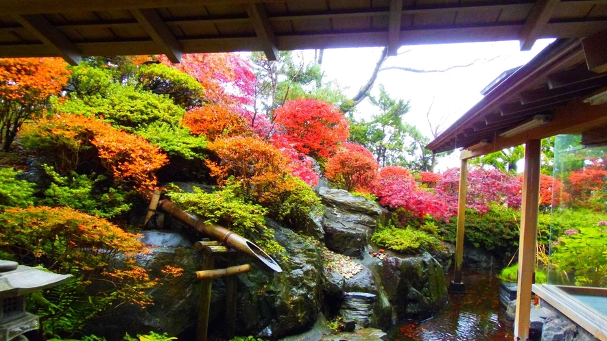 ・1階特別室の庭園