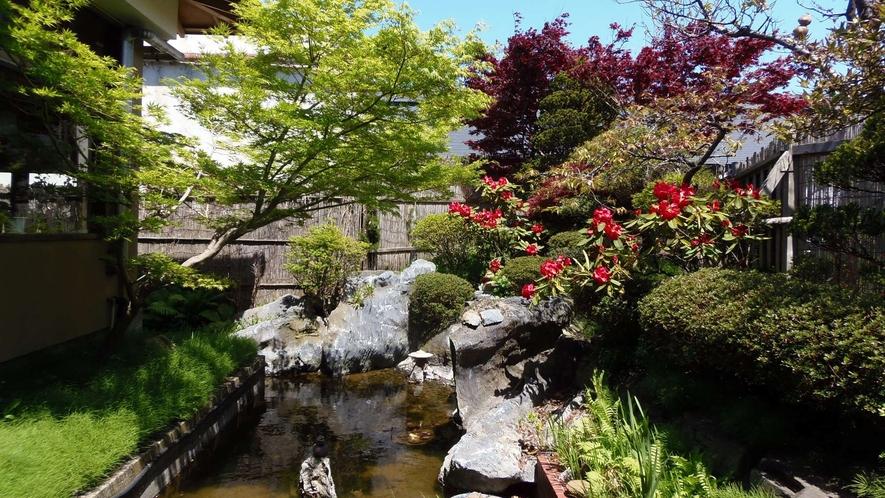 ・四季折々の草花が楽しめるお庭の池