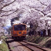 芦野公園と津軽鉄道