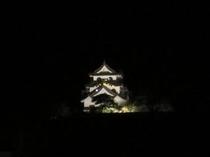 ≪一部ツインの眺望≫ライトアップの彦根城