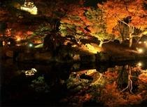 ≪観光≫11月彦根城内・玄宮園錦秋のライトアップ