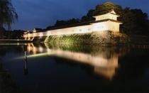 ≪観光≫秋の彦根城ライトアップ